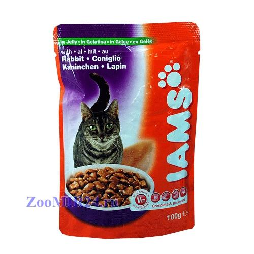 pet care iams for iams cat food review