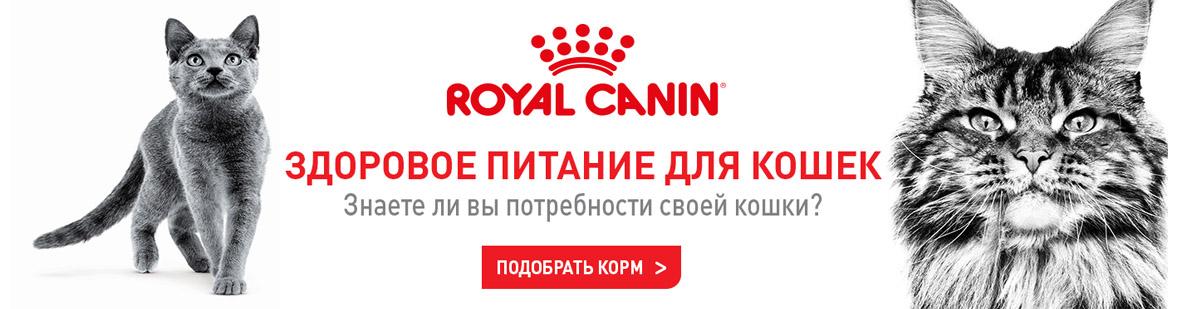 Акции на корма Royal Canin. Подробнее узнавайте у продавца.