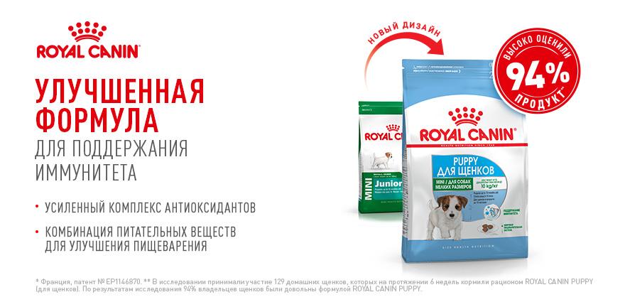 Купить корм Acana (Акана) для собак и кошек в Минске